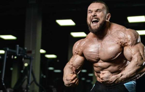 Enhance Your Muscle Growth And Boost Energy Level With Crazy Bulk