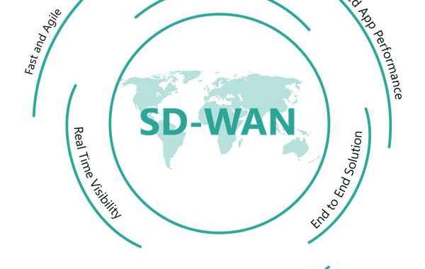 A Brief outline on SD-WAN Solutions