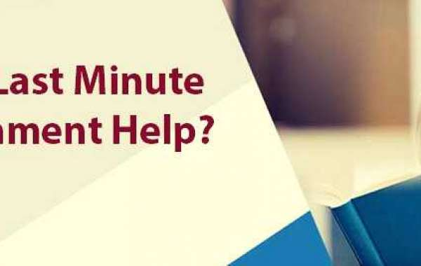 Assignment Help Bristol Is Now One Click Away from You