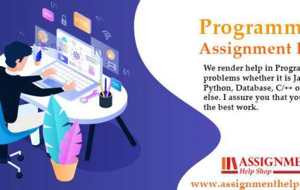 How to apply for Programming assignment help?