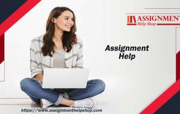 Assignment Help - How to Choose the Best Service Provider