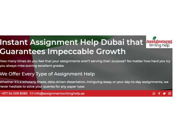 Urgently Looking for a Reliable Assignment Service in UAE?