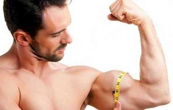 Just how to Build Muscle Pertaining to Slim Guys